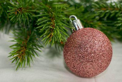 Douglasie Weihnachtsbaum Kaufen.Weihnachtsbaum Pflegen Welcher Hält Am Längsten