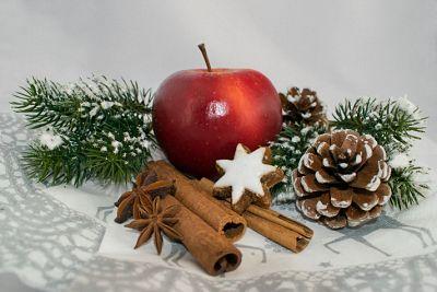 Ätherische Öle zur Adventszeit: Weihnachtsduft aus der Pflanzenwelt